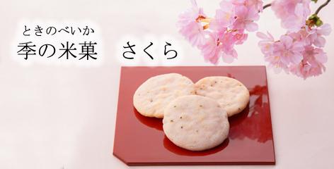 季の米菓 さくら